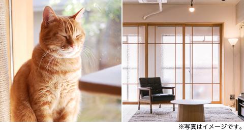 リノベ完成見学会20190309photo02
