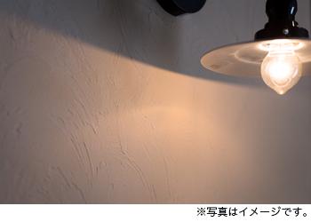 リノベ完成見学会-photo02